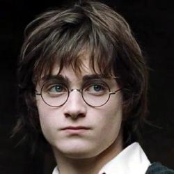 Гарри Поттер и Кубок Огня — Гарри Поттер