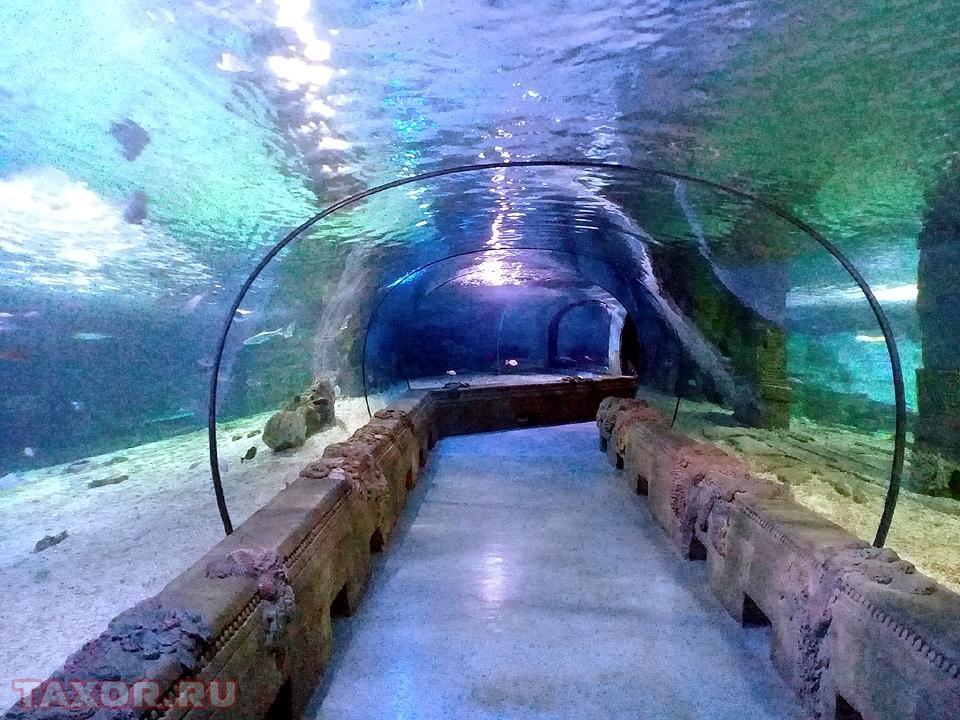 Стеклянные аквариумные своды в аквапарке московского торгового центра «Рио»