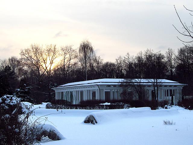 Зимний закат в Сокольниках
