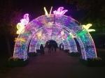 Светогалерея в Перовском парке - увеличить фотографию