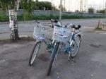 Экологичесский транспорт для боярина - увеличить фотографию